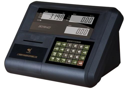 XK3190-A23P控制仪表及变送器XK3190-A23P