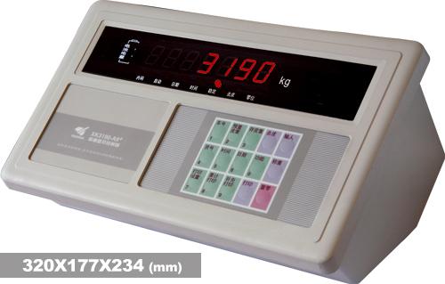 XK3190-A9+仪表