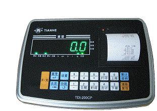 称重仪表TDI-200CP